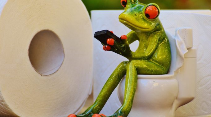 10 Reasons You Need a Waterless Toilet